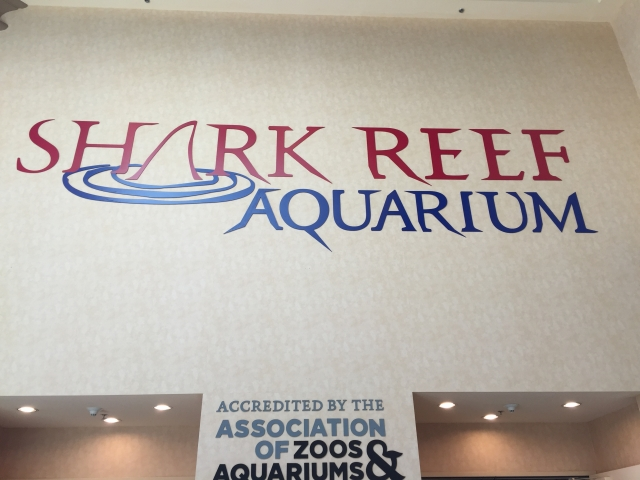 Shark Reef Acquarium Entrance - Mandalay Bay