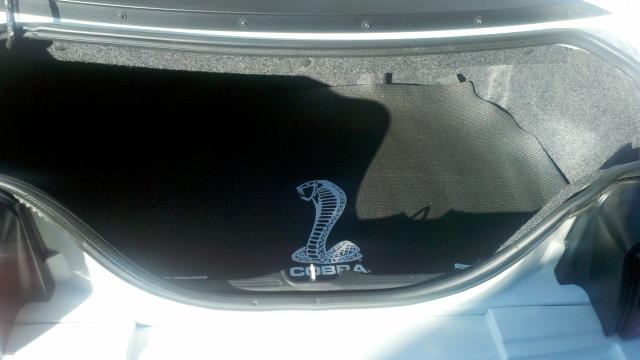 Cobra Trunk Mat